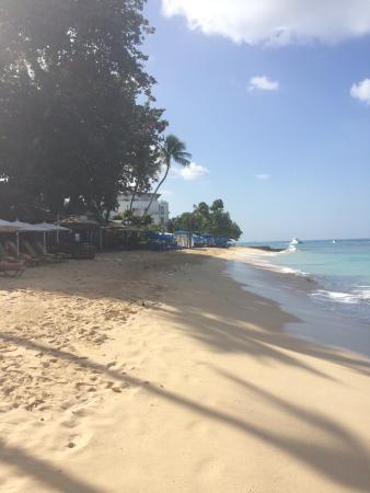 Paynes Bay, Barbados: Beach to the left