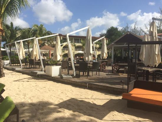 Paynes Bay, Barbados: 246 Restaurant