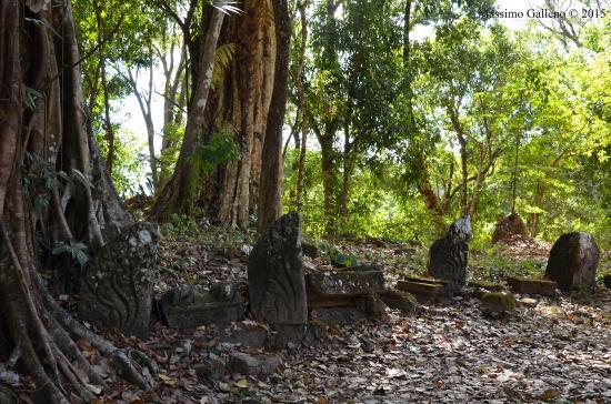 Champasak Town, Laos: Pietre sul terreno