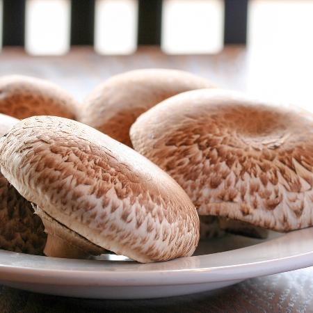 Lower Sackville, Kanada: Portabello Mushrooms