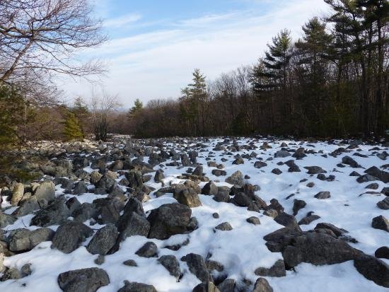 Kempton, PA: One of the larger boulder fields. Boulders like this all over the mountain hidden by trees also.