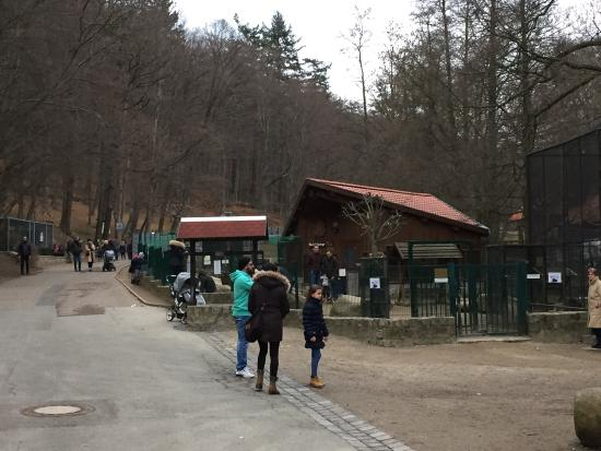 Wildpark Christianental: photo1.jpg