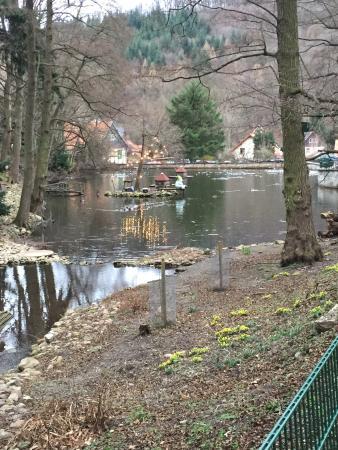 Wildpark Christianental: photo2.jpg