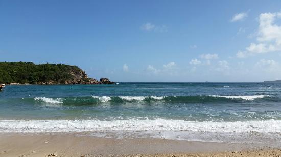 Costa Sur, St. Thomas: 20160201_133110_large.jpg