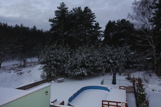 Slubice, Polen: вид на лес