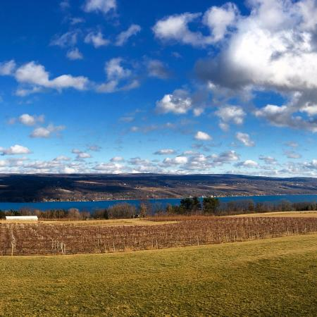 Dundee, NY: Looking east over Seneca Lake in February (no snow!)