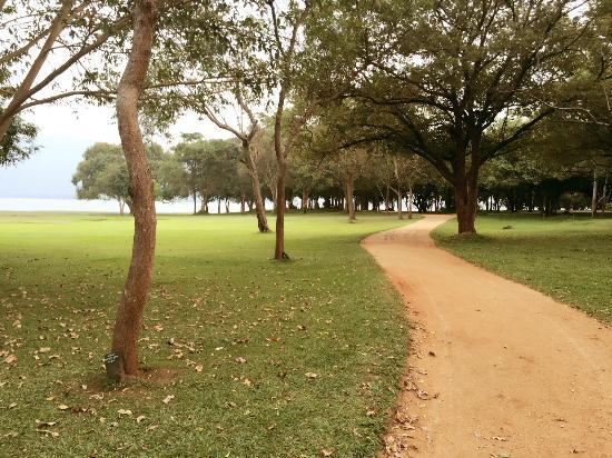 Amaya Lake: Nice view