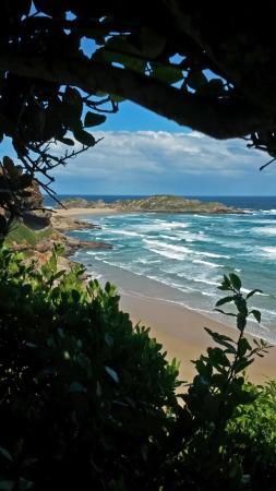 Plettenberg Bay, Zuid-Afrika: Wunderschön