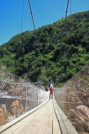 Tsitsikamma National Park, Sydafrika: Wir hatten Glück - gerade kein Reisebus in Sicht ;-)