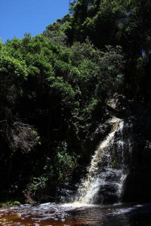 Tsitsikamma National Park, Sydafrika: auf dem Weg zurück - derselbe, wie hin