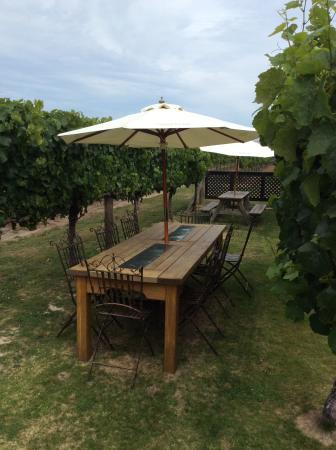 Μπλένχαϊμ, Νέα Ζηλανδία: Luncheon amongst the vines