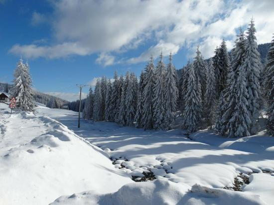 Arieseni, Roemenië: surroundings