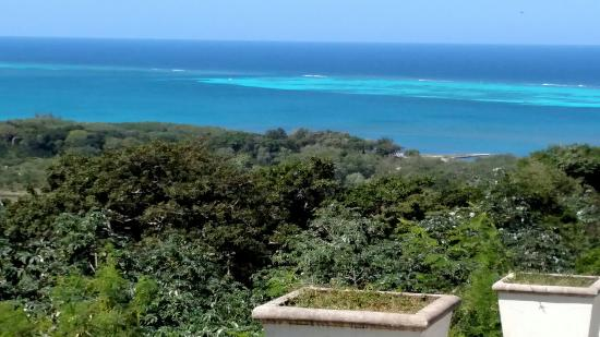 Coxen Hole, Honduras: Penny and Julio at Amazing Roatan Tours is the best to learn about the island and history of the
