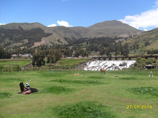 Sicuani, Peru: Vista desde el interior