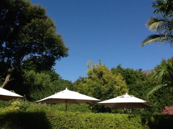 pool picture of avondrood guest house franschhoek tripadvisor rh tripadvisor ie