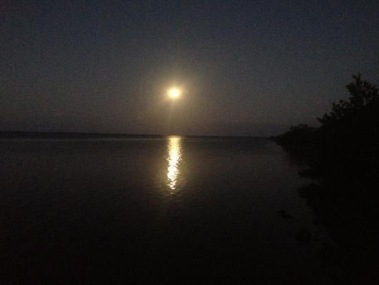 Homestead, FL: Full Moon at Biscayne National Park