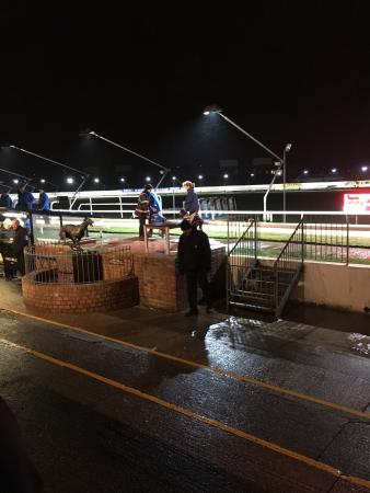 Coral, Brighton & Hove Greyhound Stadium: Great night out! Was raining on our visit but still fun. Plenty of seats indoors with a big scre