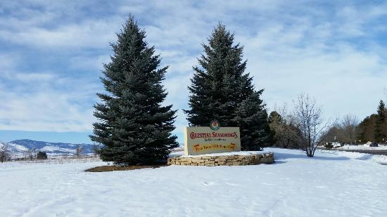 Boulder, CO: Celestial Seasonings Tea Factory