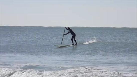 Sarasota Paddleboard Company: Lido Beach
