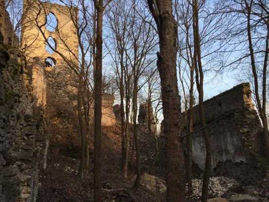 Castle Dobra Voda