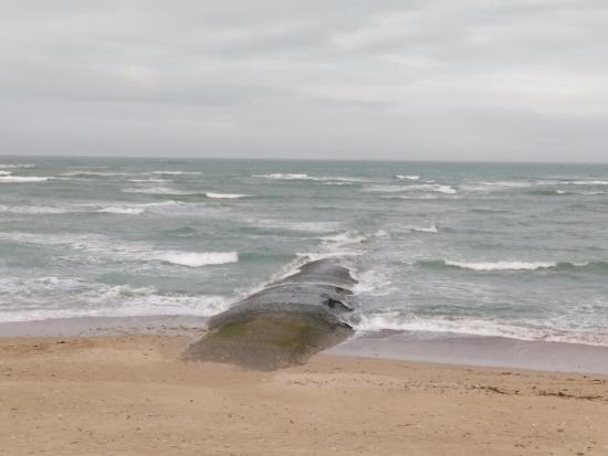 Saint Clement des Baleines照片