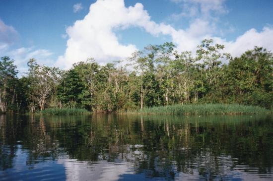 Rio Momon, Peru: Selva Amazonica