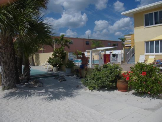 Suncoast Motel: The pool from the beach