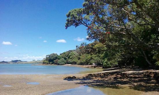 Kerikeri, Nueva Zelanda: The private beach at Driftwood Seaside Escapes