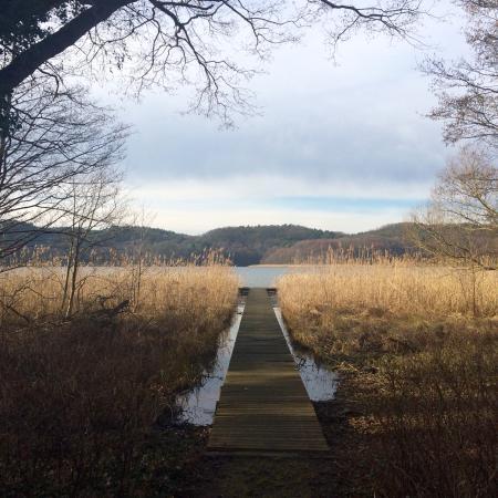 Buckow, Almanya: Blick vom Garten auf den See