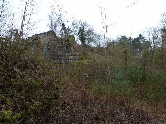 Houx, België: Les Ruines Medievales de Poilvache
