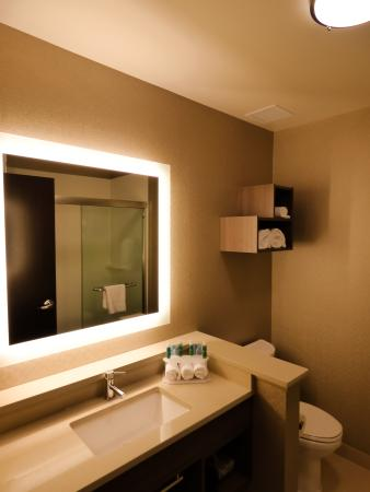 Plymouth, MI: Private guestroom bathroom one king bed rooms