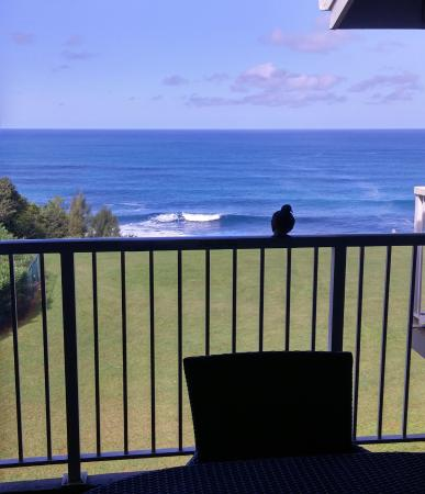 Cliffs at Princeville: View from Lanai Unit 9303