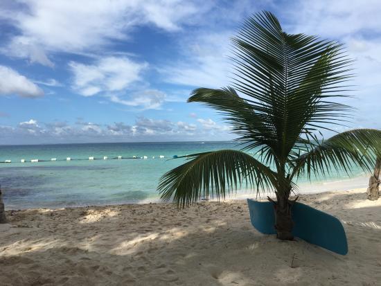 Bayahibe, Dominikana: Saona