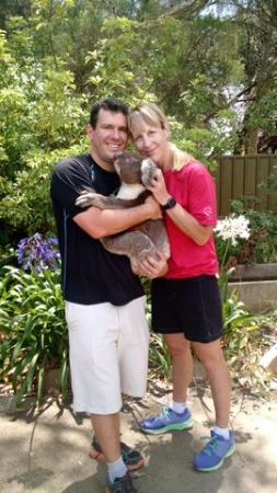 Kingscote, Australia: Koala encounter at Kangaroo Island Wildlife Park