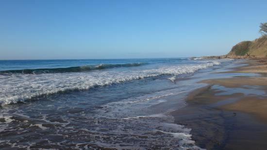 essay on a windy day at the seaside Sounds of the sea and ocean – splashing waves, breeze and seagulls home enjoy sounds of the sea and ocean – splashing waves, breeze and seagulls in your pocket.