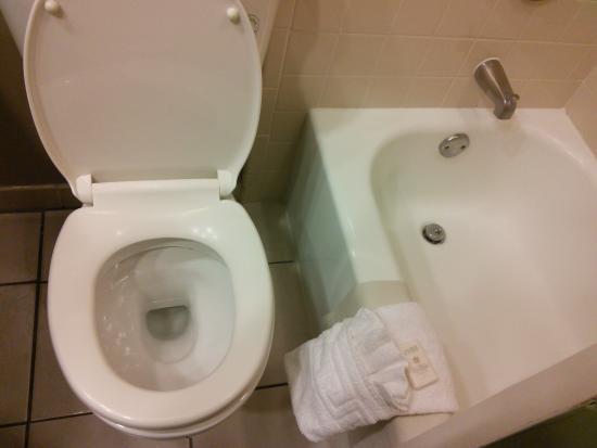 clean toilet and tub picture of crockett hotel san antonio rh tripadvisor com how to unclog bathtub drain