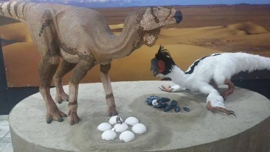Museu Joias da Natureza