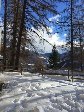 Oga, Włochy: photo5.jpg