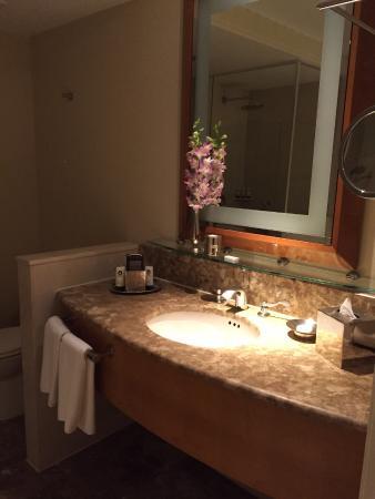Sofitel - bathroom (nice orchids!)