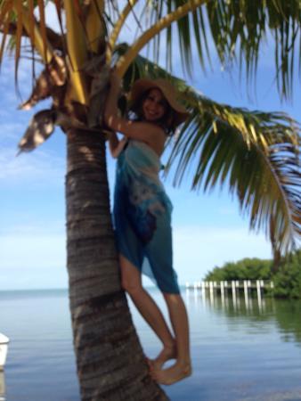 Gulf View Waterfront Resort: photo2.jpg