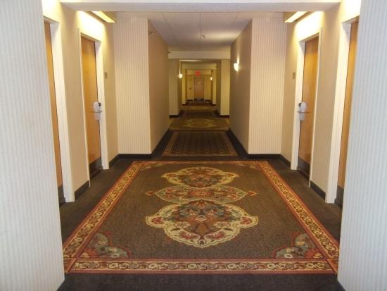 "Mount Vernon, IL: The Shining hallway. ""Redrum, Redrum"" All that's missing are the twins."