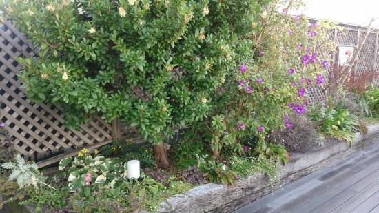 Itami, Japón: お花も!