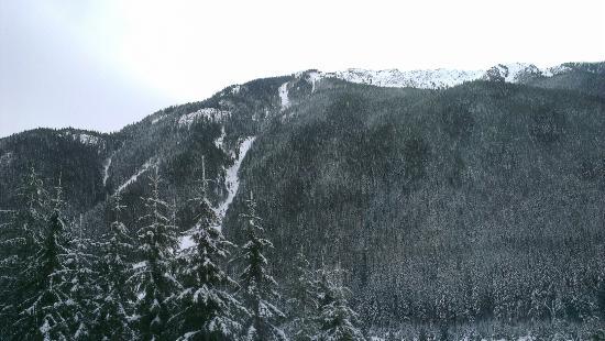 Revelstoke, Kanada: IMAG6176_large.jpg