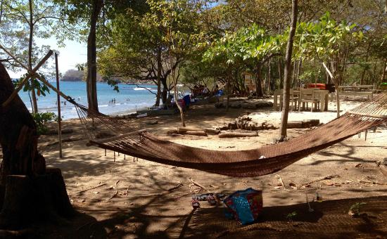 hammock near the restaurant picture of limonada las catalinas rh tripadvisor com