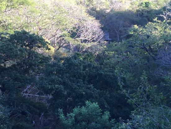 Bagaces, كوستاريكا: Hiking views