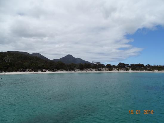 Coles Bay, ออสเตรเลีย: Wineglass bay cruise