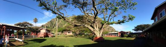 Kaneohe, Havai: Pano of the Ranch, taken around 9:00am
