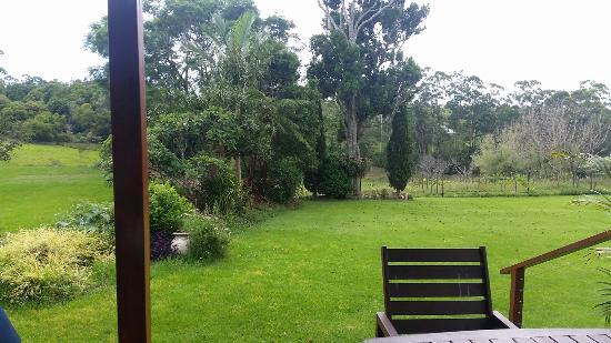 North Tamborine, Australie : Mason Wines' Eden Restaurant