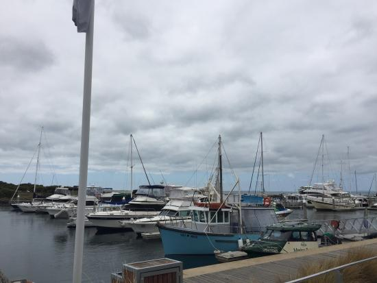 Queenscliff, Australia: Boats at the harbour