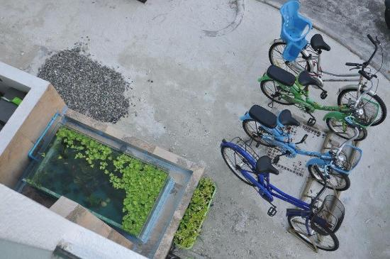 Hulhumale: free bicycle ride for hotel guest.
